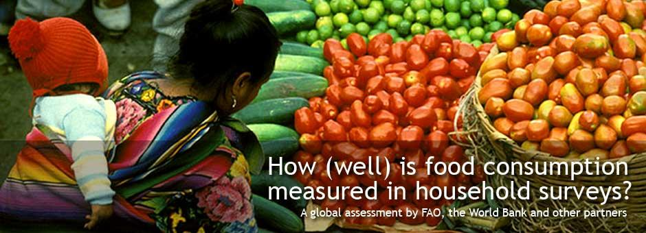 food consumption measured in household surveys